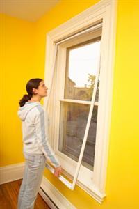 Eco Friendly Insulating Windows