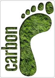 Carbon Offsets and Accounting Services