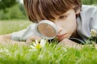 Environmental and Nature Education
