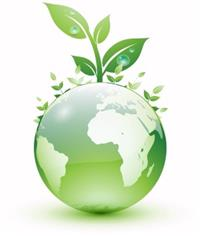 Find an Environmental Job