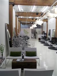 Green Hair Salon