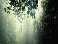 Rainwater Harvesting for Water Conservation