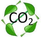 Zero Carbon Design